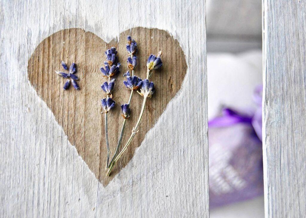 『紫の薬草箱』